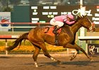 Hollendorfer's Pair Looks Strong in Bayakoa