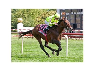 Jakkalberry pours it on late to win the American St. Leger Stakes at Arlington Park Aug. 18.