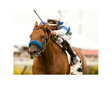 Sidney's Candy winning the La Jolla Handicap Aug. 14