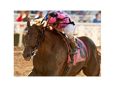 Weemissfrankie tries for her third grade I win in the Hollywood Starlet.