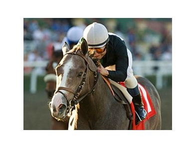 "The Pamplemousse<br><a target=""blank"" href=""http://www.bloodhorse.com/horse-racing/photo-store?ref=http%3A%2F%2Fpictopia.com%2Fperl%2Fgal%3Fprovider_id%3D368%26ptp_photo_id%3D7456882%26ref%3Dstory"">Order This Photo</a>"