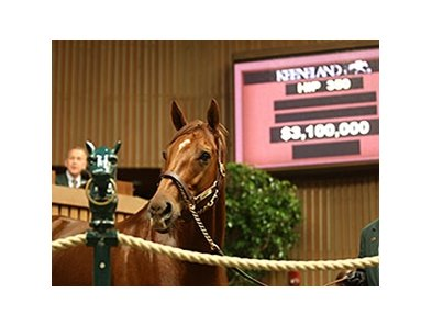 Champion and two-time Breeders' Cup winner Groupie Doll brought a session-topping $3.1 million bid.