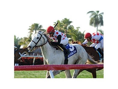 "Za Approval delivers in the Appleton at Gulfstream.<br><a target=""blank"" href=""http://photos.bloodhorse.com/AtTheRaces-1/at-the-races-2013/27257665_QgCqdh#!i=2433242745&k=SrbJJLq"">Order This Photo</a>"