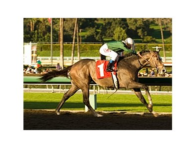 "The Pamplemousse strides away in the San Rafael.<br><a target=""blank"" href=""http://www.bloodhorse.com/horse-racing/photo-store?ref=http%3A%2F%2Fpictopia.com%2Fperl%2Fgal%3Fprovider_id%3D368%26ptp_photo_id%3D7456544%26ref%3Dstory"">Order This Photo</a>"