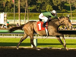 The Pamplemousse wins the San Rafael.