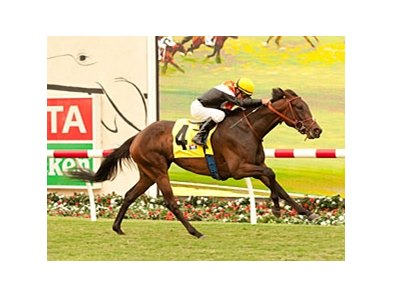 Wishing Gate won the San Clemente by by 1 3/4 lengths.