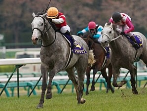 Gold Ship in the Japanese 2,000 Guineas.