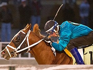 Dom the Bomb wins the 2014 Jim Edgar Illinois Futurity.