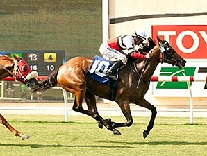 Cozze Up Lady wins the 2014 Osunitas Stakes.