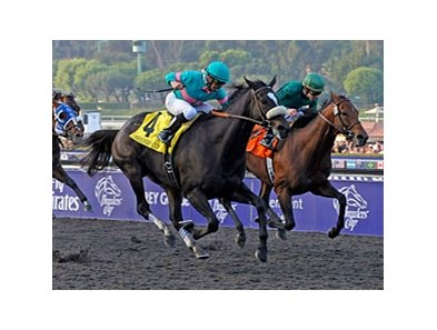 "Zenyatta earned $3,330,000 in 2009 to become the fourth filly or mare to top the leading earners list.<br><a target=""blank"" href=""http://www.bloodhorse.com/horse-racing/photo-store?ref=http%3A%2F%2Fpictopia.com%2Fperl%2Fgal%3Fprovider_id%3D368%26ptp_photo_id%3D8609665%26ref%3Dstory"">Order This Photo</a>"