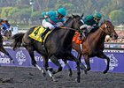 "It's Zenyatta in the Classic!<br><a target=""blank"" href=""http://www.bloodhorse.com/horse-racing/photo-store?ref=http%3A%2F%2Fpictopia.com%2Fperl%2Fgal%3Fprovider_id%3D368%26ptp_photo_id%3D8609665%26ref%3Dstory"">Order This Photo</a>"