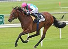 Promising Victory in Pretty Polly Stakes