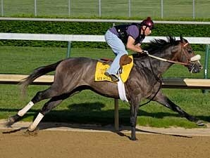 Win Willy Works at Churchill Downs on April 27
