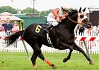 Ben's Cat won the 2011 Maryland Million Turf Sprint by a length.