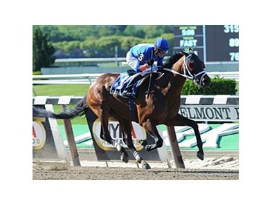 "Saginaw won the 2012 Affirmed Success Stakes by 7 1/2 lengths.<br><a target=""blank"" href=""http://photos.bloodhorse.com/AtTheRaces-1/at-the-races-2012/22274956_jFd5jM#!i=2542769587&k=pccgr4D"">Order This Photo</a>"