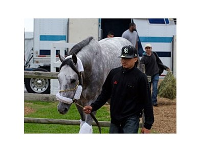 Take the Points arrives at Pimlico Preakness morning.