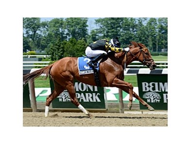 "Dance to Bristol will try to extend her winning streak in the Gallant Bloom.<br><a target=""blank"" href=""http://photos.bloodhorse.com/AtTheRaces-1/at-the-races-2013/27257665_QgCqdh#!i=2576664376&k=Z27nBkz"">Order This Photo</a>"
