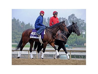 "No Jet Lag<br><a target=""blank"" href=""http://photos.bloodhorse.com/BreedersCup/2013-Breeders-Cup/Breeders-Cup/32986083_QMHXWK#!i=2859460130&k=wc8nF7R"">Order This Photo</a>"