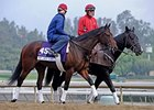 Turf Entrants Get Work Over Santa Anita Lawn