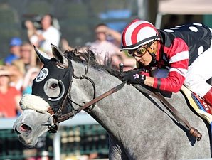 Alcibiades Winners in Keeneland January Sale