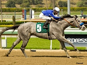 Holy Candy Maiden Win March 23, 2012.