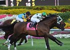 "2009 Ft. Lauderdale Stakes winner Kiss The Kid is back for the 2010 version.<br><a target=""blank"" href=""http://www.bloodhorse.com/horse-racing/photo-store?ref=http%3A%2F%2Fpictopia.com%2Fperl%2Fgal%3Fprovider_id%3D368%26ptp_photo_id%3D7377650%26ref%3Dstory"">Order This Photo</a>"