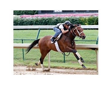 Mine That Bird zipped five furlongs in :59 2/5 over a muddy track at Churchill Downs on June 28.