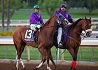"California Chrome<br><a target=""blank"" href=""http://photos.bloodhorse.com/BreedersCup/2014-Breeders-Cup/Classic/i-k2hGDPc"">Order This Photo</a>"