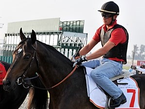 Gloria de Campeao Dubai World Cup Week 2010.