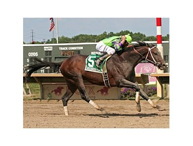 A. U. Miner wins the Greenwood Cup once again at Parx Racing.