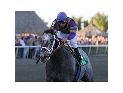 "Flashpoint is unstoppable in the Hutcheson Stakes.<br><a target=""blank"" href=""http://www.bloodhorse.com/horse-racing/photo-store?ref=http%3A%2F%2Fpictopia.com%2Fperl%2Fgal%3Fprovider_id%3D368%26ptp_photo_id%3D9423386%26ref%3Dstory"">Order This Photo</a>"
