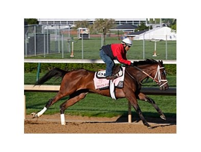 Dreaming of Julia breezed a half-mile in :48 4/5 on April 20 at Churchill Downs.
