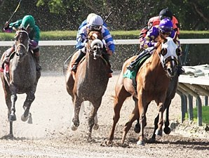 Awesome Belle wins the 2012 Frances A Genter Stakes.