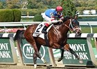 Ostrolenka won the Sleepy Holly Stakes for New York-breds last year at Belmont.