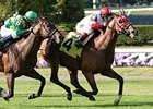 "Hyper is the morning-line favorite in the Kentucky Turf Cup Stakes.<br><a target=""blank"" href=""http://photos.bloodhorse.com/AtTheRaces-1/at-the-races-2013/27257665_QgCqdh#!i=2750249833&k=PQ4c2Gc"">Order This Photo</a>"