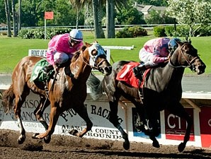 Reconstruction wins the Livermore Wine Stakes.