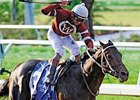"Louisiana Derby winner Pyro will try to return to the Winner's Circle in the Northern Dancer.<br><a target=""blank"" href=""http://www.bloodhorse.com/horse-racing/photo-store?ref=http%3A%2F%2Fpictopia.com%2Fperl%2Fgal%3Fprovider_id%3D368%26ptp_photo_id%3D3811575%26ref%3Dstory"">Order This Photo</a>"