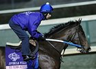 My Miss Aurelia Choice in Juvenile Fillies