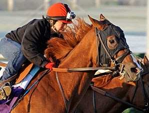 Dullahan - Churchill Downs, Oct 29, 2011.