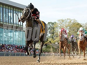 Street Story wins the 2014 Instant Racing Stakes.