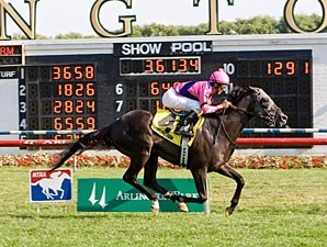 Willcox Inn wins the 2011 American Derby.