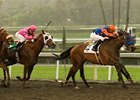 "Santa Anita Oaks winner Crisp<br><a target=""blank"" href=""http://www.bloodhorse.com/horse-racing/photo-store?ref=http%3A%2F%2Fpictopia.com%2Fperl%2Fgal%3Fprovider_id%3D368%26ptp_photo_id%3D8825809%26ref%3Dstory"">Order This Photo</a>"