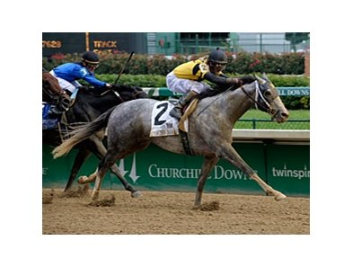"Macho Again won the Stephen Foster in June at Churchill Downs. <br><a target=""blank"" href=""http://www.bloodhorse.com/horse-racing/photo-store?ref=http%3A%2F%2Fpictopia.com%2Fperl%2Fgal%3Fprovider_id%3D368%26ptp_photo_id%3D8233511%26ref%3Dstory"">Order This Photo</a>"