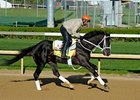 Black Onyx at Churchill Downs.