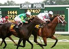 Big Brown holds off Proudinsky to take the Monmouth Stakes on the Monmouth turf.