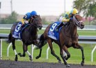 "Spring in the Air won the Alcibiades in the Fall at Keeneland.<br><a target=""blank"" href=""http://photos.bloodhorse.com/AtTheRaces-1/at-the-races-2012/22274956_jFd5jM#!i=2132032852&k=LWF3W4m"">Order This Photo</a>"