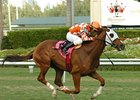 "Presious Passion looks for firmer ground in California.<br><a target=""blank"" href=""http://www.bloodhorse.com/horse-racing/photo-store?ref=http%3A%2F%2Fpictopia.com%2Fperl%2Fgal%3Fprovider_id%3D368%26ptp_photo_id%3D4084128%26ref%3Dstory"">Order This Photo</a>"
