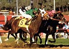 Wild Again winning the first Breeders' Cup Classic