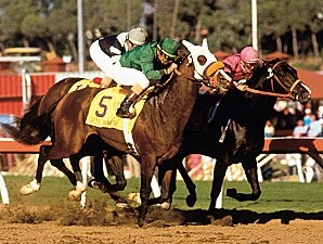 Wild Again, inside, wins the 1984 Breeders' Cup Classic.