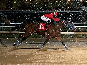 Musicinthehouse wins the 2013 Sophomore Sprint Championship Stakes.